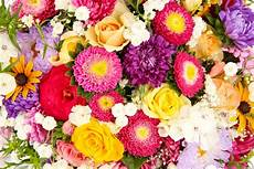 bright flower wallpaper desktop colorful flowers wallpaper and background image