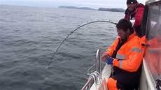 stor fisk fiske i norge myfjord sj 246 hus h 228 lleflundra 2013 1 5