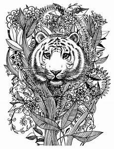 Ausmalbilder Kostenlos Ausdrucken Erwachsene Ausmalbilder F 252 R Erwachsene Tiger Zum Ausdrucken