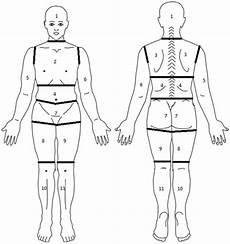Blank Body Chart Diagram Of Body Segmented Into Regions For Assessment Of