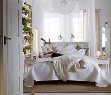 piante per da letto piante in da letto consigli camere da letto