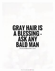 hair quotes grey hair quotes quotesgram