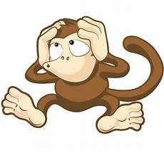 Monkey Design Website Design Marbella Costa Del Sol Web Design