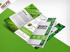 Foldable Pamphlet Template Nature Tri Fold Brochure Template Free Psd Aug