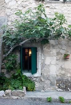 fioriere per davanzale finestra pin di marina conti su finestre porte balconi porte