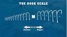 Hook Size Chart Understanding Hook Sizes And How To Choose One
