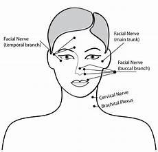 Facial Techniques Chart How To Perform Facial Facial Benefits