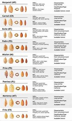 Almond Variety Chart Variety Chart Valley Gold Foods