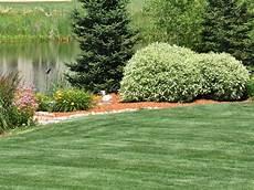 Casper Landscape Design Plant Healthcare Services Casper Wy All Trees