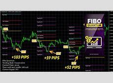 Fibo Quantum Unique Forex Indicator 2018   Forex Winners