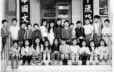 Diana Vs Board Of Education Lau V Nichols Timeline Timetoast Timelines