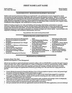 Venture Capital Resume Sample Sales Executive Resume Template Premium Resume Samples