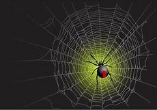 web bid vector spider web design background graphics 05 free