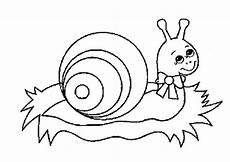 Malvorlagen Kinder Schnecken Ausmalbilder Fr 252 Hling Tiere Batavusprorace