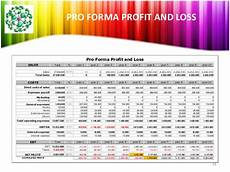 Pro Forma Profit And Loss Template Presentation About Nanotechnology And Business Plan
