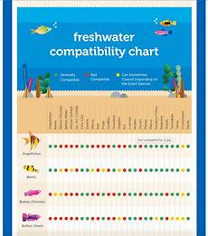 Bird Compatibility Chart Petco Introduces A Freshwater Compatibility Chart Aquanerd