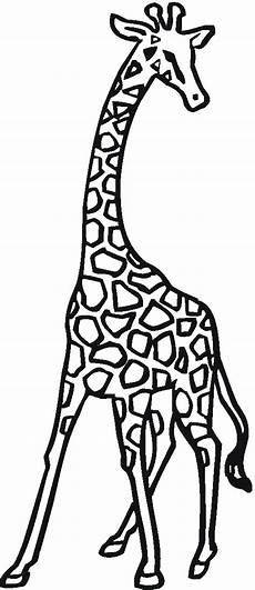 free giraffe coloring pages