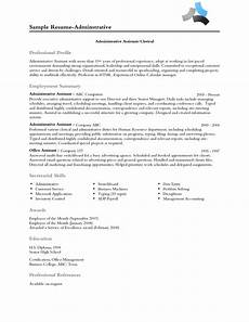 Professional Profile Examples Resume Resume Professional Profile Examples Professional Profile