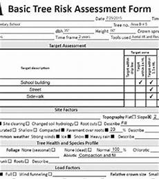 Tree Report Template Tree Risk Assessment