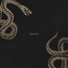 wallpapers gucci gucci snake wallpapers wallpaper cave