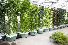 Garden Light Tower Hydroponic Towers What S The Deal Complete Hydroponics