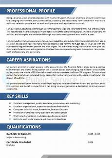 What Is Career Aspiration Government Accountant Amp Finance Resume 187 Public Service