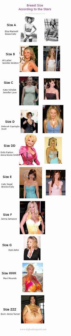 Different Breast Sizes Chart I Also Have A Page That Has A List Of Over 200 Celebrity