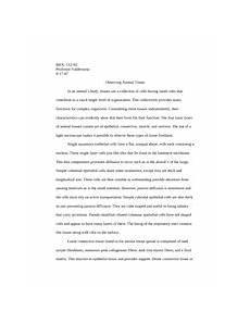 Bio Essay Bio Lab Photosynthesis Essay Biol 112 02 Observing