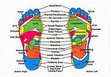 Reflexology Chart Complementary Therapy Reflexology Healing Touch Charlotte