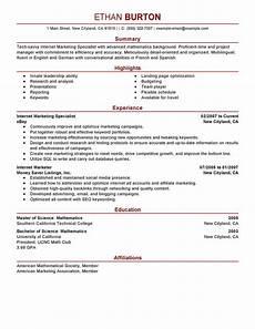 Digital Media Resume Best Online Marketer And Social Media Resume Example