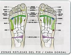 Reflexologia Podal Reflexologia Podal Terapiasparalasalud 180 S Blog