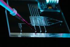 Lab On Chips Lab On A Chip For Tracking Single Bacterial Cells Epr