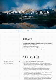 Cio Sample Resume Cio Resume Samples And Templates Visualcv