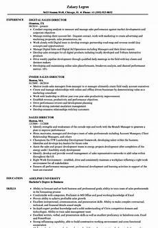 Director Of Sales Resume Sales Director Resume Samples Velvet Jobs