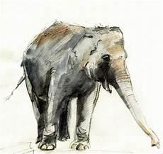 Malvorlage Indischer Elefant Indischer Elefant Indischer Elefant Afrika Tiere
