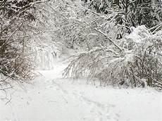 fata vsco fata la fata inverno bosco inverno fate