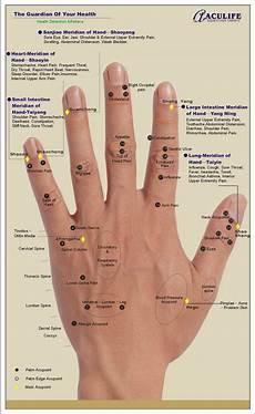 Hand Chart Hand Reflexology Charts