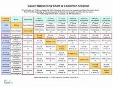 Cousin Chart Calculator How Much Dna Do Family Members Share With Cousin
