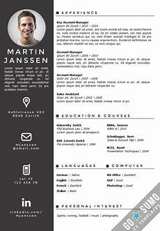 Curriculum Vitae Word Template Cv Word Template English
