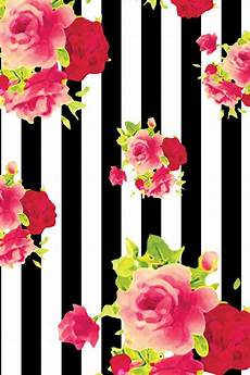 Iphone Wallpaper Black With Flower by Pin By Jazmin Xoxo On Floral Wallpaper Iphone