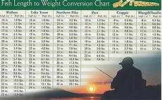 Northern Weight Chart Fish Weight Chart Information