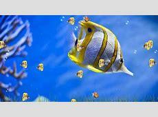 3D Desktop Wallpapers For Windows 7 Group (84 )