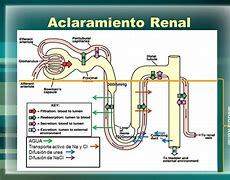 Image result for ac0llaramiento