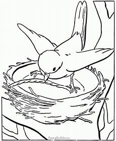 get this bird coloring pages animal printables for