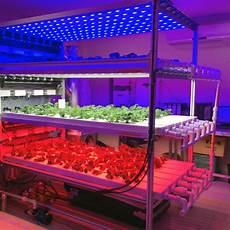 Led Lights Greenhouse China High Quality Greenhouse Led Grow Lighting For