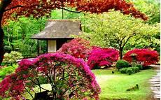 Flower Wallpaper Garden by Gardens Hd Wallpapers Wallpaper202