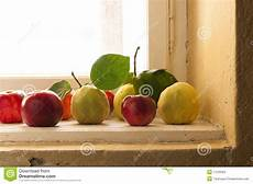 davanzale finestra cotogna e mele sul davanzale della finestra fotografia