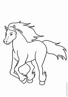 pferde 72 malvorlagen xl