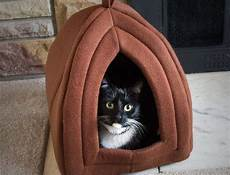 best cat bed in 2019 cat bed reviews and ratings