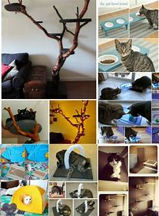 20 purrfect diy projects for cat owners page 2 of 2